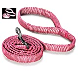 Embark Illuminate Reflective Dog Lead - 5 Feet Long and 1 Inch in Width - Dog Leads for Large Dogs, Made with Reflective Leash Material Throughout (2.5 CM, Pink)