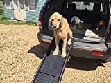 doghealth safety engineered Pet Ramp Lightweight and strong