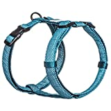 Embark Illuminate Reflective Dog Harness - Soft and Durable Materials for a Comfortable Fit - Provides Total Reflectivity and Lights Up The Night (Small, Blue)