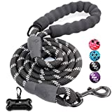 JBYAMUK 5 FT Strong Dog Lead with Comfortable Padded Handle and Highly Reflective Threads for Small, Medium and Large Dogs (5-FT, Black)