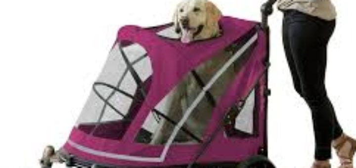 Dog Strollers Uk 2019 10 Of The Best Strollers For Small Pups